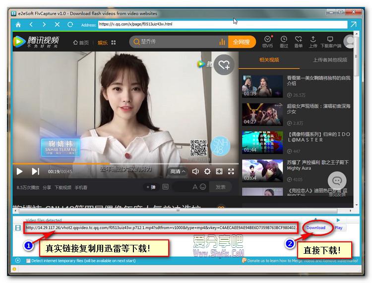 经典好用的在线视频下载软件FlvCapture(绿色版)!