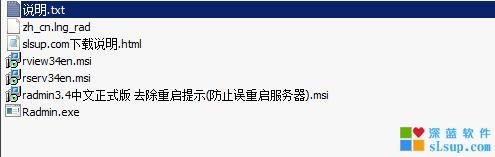 Radmin3.4直装版 去托盘图标 包括中文版